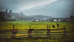 farming stock afbeeldingen
