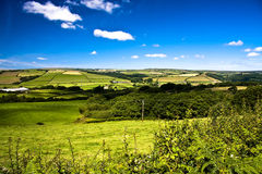 Farming in Devon. Rollling green hills of Devon depicting a typical mixed farming area stock photos