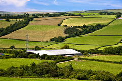 Farming in Devon. Rollling green hills of Devon depicting a typical mixed farming area Royalty Free Stock Photo