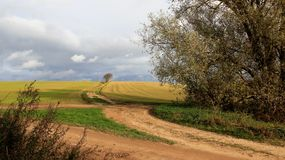 Farmland With Dirt Roads. Farming with dirt roads and overcast countryside in Germany royalty free stock photos