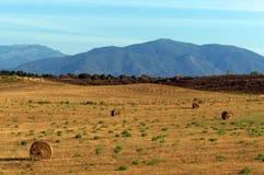 Farming in Eastern plain of Corsica Royalty Free Stock Photos