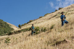 Farming in ethiopia Royalty Free Stock Photos