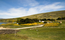 Farming in the Falklands Royalty Free Stock Images