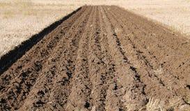 Farming Field. Royalty Free Stock Image