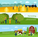 Farming 3 flat horizontal banners set Stock Photo