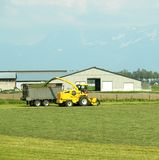 Farming Fraser Valley Canada Royalty Free Stock Photography