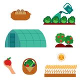 Farming and gardening scenes set in flat cartoon style isolated on white background. Farming and gardening scenes set in flat cartoon style isolated on white Royalty Free Stock Photography