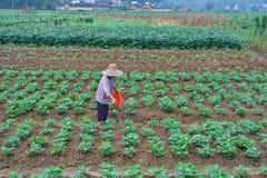 Farming 3. Hard farming, the farmers' life and survival Stock Photo