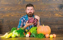 Farming and harvesting concept. Man bearded holds grapes wooden background. Farmer with homegrown harvest on table. Vegetables organic harvest. Farmer proud of royalty free stock image