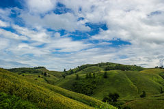 Farming on hill. Agricultural field on hill with beautiful sky Royalty Free Stock Photo