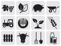Farming icons. Vector agriculture and farming icons Royalty Free Stock Photos