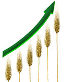 Farming industry. And agriculture business profits symbol with rising and growing wheat chart and green arrow pointing upward isolated on a white background as Royalty Free Stock Photos