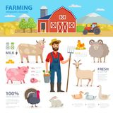 Farming infographic elements. Farmer, farm animals, equipment, barn, tractor, landscape large set of vector flat. Illustrations isolated on white background Royalty Free Stock Photos