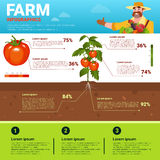 Farming Infographics Eco Friendly Organic Natural vegetable Growth Farm Production Banner With Copy Space Stock Photos