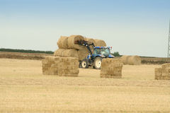 Farming Ireland Royalty Free Stock Photography