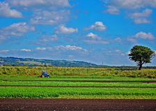 Farming the land Stock Images