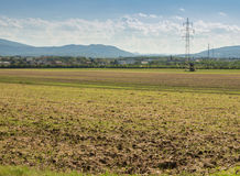 Farming land, crop field Royalty Free Stock Photos