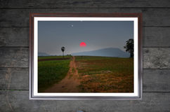 Farming land on the hill picture Stock Photos