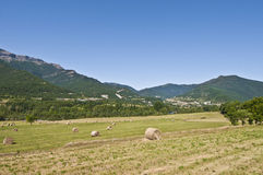 Farming lands of Arresa, Spain Royalty Free Stock Photo