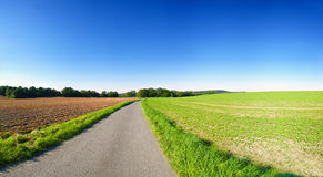 Farming landscape. With clear blue sky. Panoramic picture with country road and fields in Germany Royalty Free Stock Photos