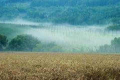 Farming landscape Stock Photo