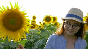 Farming life, beautiful teenager on field with sunflowers enjoy the fresh air in sunlight. Farming life, beautiful teenager on field with sunflowers enjoy the stock footage