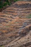 Farming in mountain. Royalty Free Stock Photos