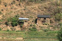 Farming in Nepal Royalty Free Stock Images