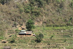 Farming in Nepal Royalty Free Stock Photos