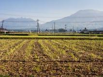 Farming on rice fields inside Aso volcanic caldera. Kumamoto prefecture, Japan royalty free stock photography