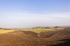 Farming Sugarcane Landscape Royalty Free Stock Image