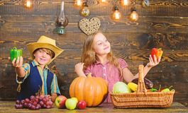 Farming teaches kids where their food comes from. Family farm. Siblings having fun. Children presenting farm harvest. Wooden background. Farm market. Kids stock photography