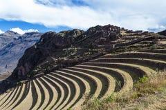 Farming terraces by the Inca Royalty Free Stock Photos