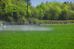 Farming tractor spraying on green field Stock Images