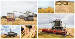 Farming vehicles collage. Digital composite of farming vehicles collage Royalty Free Stock Photo