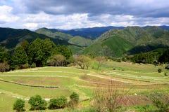 Farming village along Kumano Kodo, near Tanabe at Wakayama, Japan Royalty Free Stock Photos