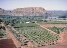 Farming. Western Australia scenes, Ord river Farming and crops at Kununurra in the Kimberley region Royalty Free Stock Image