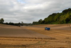 Farming Wiltshire Stock Photo