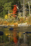Farmington River, Connecticut, with reflections of red fall foliage. Vibrant reflections of fall foliage on waters of the Farmington River in Canton royalty free stock image