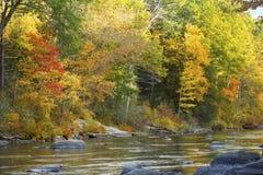 Farmington River flows by vibrant fall foliage in Canton, Connec Royalty Free Stock Photos