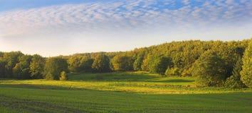 Farmland. In Denmark on a sunny day Stock Photography