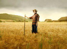 Farmland Stock Photos