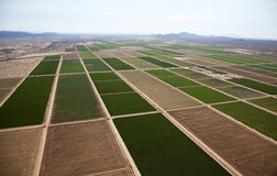 Farmland. Aerial view of farmland north of Casa Grande Royalty Free Stock Image