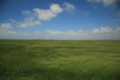 Farmland. A patch of french farmland in the sun Royalty Free Stock Photography