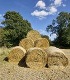 Farmland. Cornfield ripening agriculture bales of hay Royalty Free Stock Photos