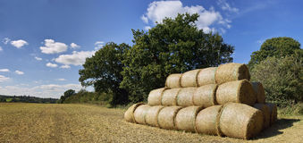 Farmland. Cornfield after harvest bales of hay Royalty Free Stock Photos