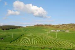 Farmland. Arable Farmland in the county of Argyll and Bute, Scotland Stock Photos