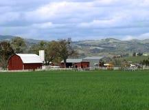 Farmland. Beautiful California farmland Stock Image