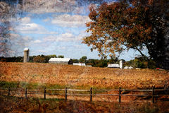 Farmland. Grunge illustrated image of a farm in KY in the autumn. The crop has been harvested Stock Image