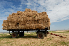 Farmland. Farmer´s trailer on the meadow Royalty Free Stock Images